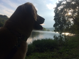 Watching the sunset on the New River.